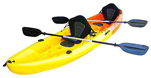 Nixie Sports 13ft Sit On Top Tandem Fishing Kayak With Backrests - Inc 2 Paddles
