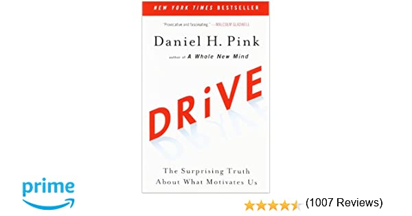 Drive: The Surprising Truth About What Motivates Us: Daniel H ...