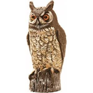 Amazon Com Owl Hidden Camera Dvr Battery Operated Nightvision With 6 Month Battery Spy