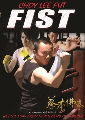 Choy Lee Fut FIST DVD