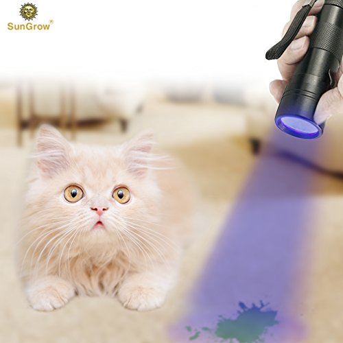 Pet Urine Detector Torch -- UV Flashlight for Dog Urine, Cat Stains, Bed Bug - 12 LED bulbs cover larger area - Waterproof - 3 AAA Batteries Included (Stink Long Bug)