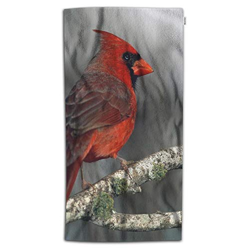Moslion Bird Bath Towel Nature Animal Red Bird on Bear Tree Branch with Moss Towel Soft Microfiber Baby Hand Beach Towel for Kids Bathroom 32x64 Inch