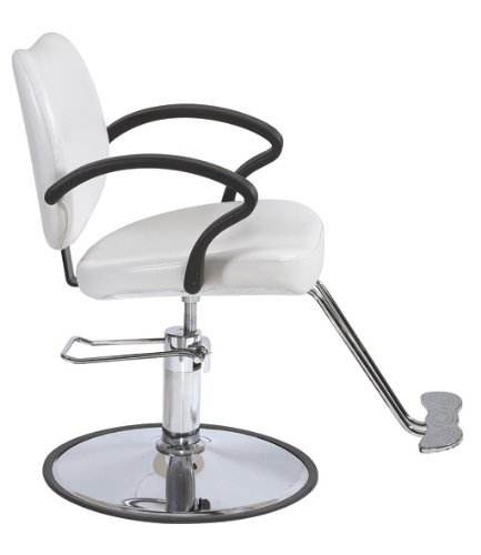 The 8 best salon chairs white