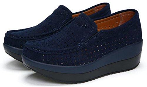 La Forma Adulta De Las Mujeres Sube Los Zapatos Corrientes De La Malla De Las Zapatillas De Deporte De La Manera Ocasional Azul