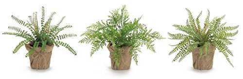 Pack of 6 Decorative Plastic Green and Brown Potted Fern by Melrose