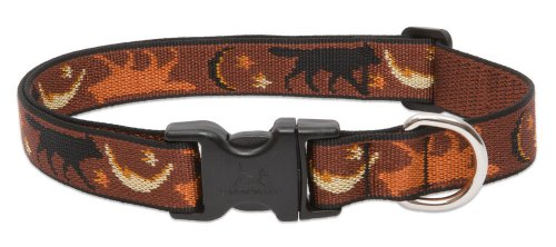"LupinePet Originals 1"" Shadow Hunter 12-20"" Adjustable Collar for Medium and Larger Dogs"