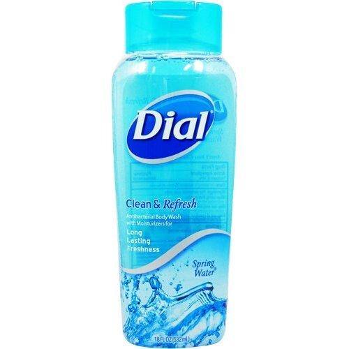 dial-antibacterial-moisturizing-body-wash-spring-water-12-oz
