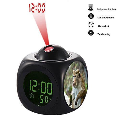 grilsight3 Projection Alarm Clock, Digital LCD Voice Talking Function, Alarm/Snooze/Temperature Display,LED Wall/Ceiling Projection 419.Brown Monkey on Gray Concrete Surface(Black)