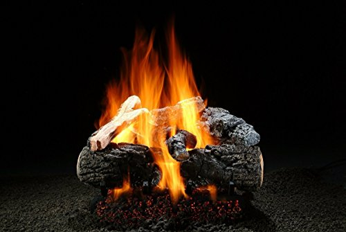 nificent Inferno 24 inch Gas Log Set with Burner ()
