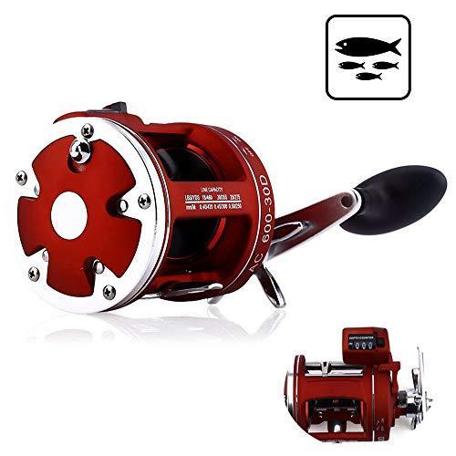 Fishing Reel, 12BB Depth Counter Left/Right Hand Saltwater/Freshwater Baitcasting Brake System Multiplier Body Cast - Drum Cast Brake