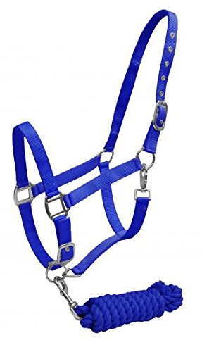 Showman 2 Ply Nylon Horse Halter with Nickel Plated Hardware with 7