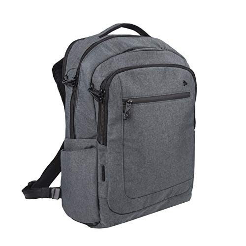 419uvLS cSL - Travelon Anti-Theft Urban Backpack, Slate