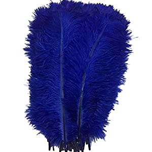 LANPEED 10pcs Ostrich Feathers 12-14inch(30-35cm) for Home Wedding Party Decoration 63