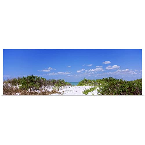 GREATBIGCANVAS Poster Print Entitled Plants Growing on The Beach, Fort De Soto Park, Tierra Verde, Gulf of Mexico, Florida by 60