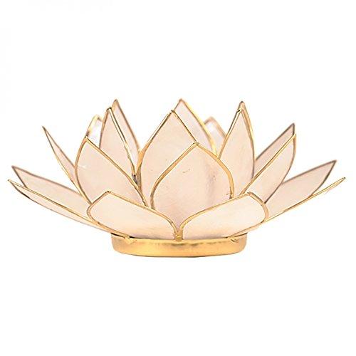 (FindSomethingDifferent Lotus Tea Candle Light Holder Capiz Shell - Natural)