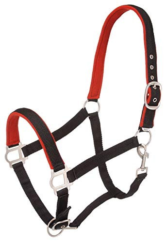 Tough 1 Nylon Padded Halter with Satin Hardware (Renewed)
