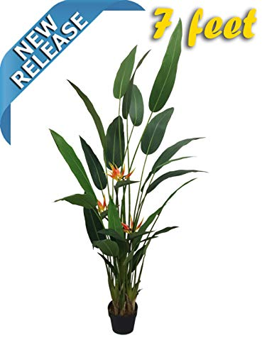 AMERIQUE Gorgeous 7' Tropical Bird of Paradise Tree with Flowers Artificial Silk Plant with UV Protection, with Nursery Plastic Pot, Feel Real Technology, Super Quality, 7 feet, Green and Orange