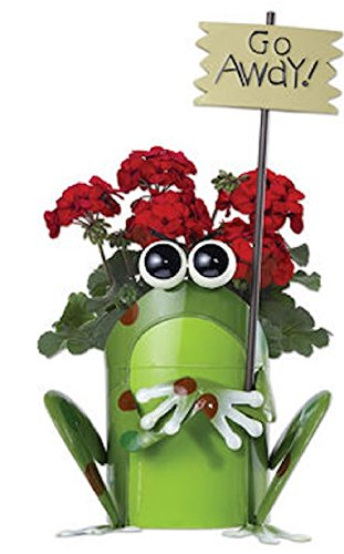 Sunset Vista Designs Get Happy Frog Planter