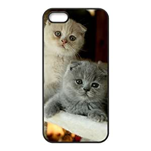 HOPPYS Scottish Fold Cat Phone Case For iPhone 5,5S [Pattern-5]