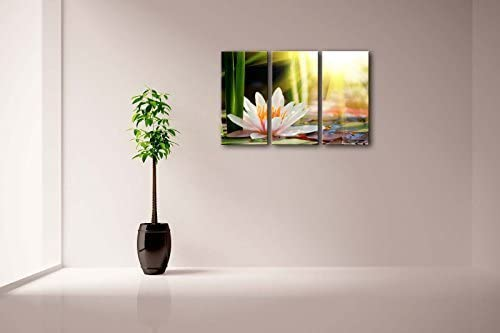 3 Panel Wall Art Beautiful Water Lily Sunshine Painting The Picture Print On Canvas Flower Picture