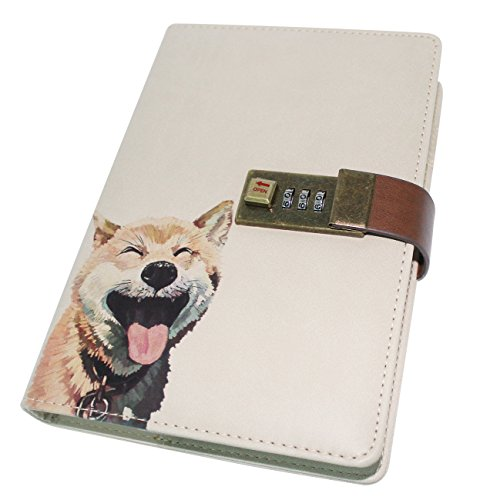 ebook with Combination Lock Pen Holder Diary Journal Sketchbook Notepad Planner,B6 Size(112Sheets/224 Pages) (Combination Notebook Lock)