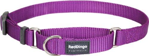 Red Dingo Classic Martingale Dog Collar, Medium, Purple