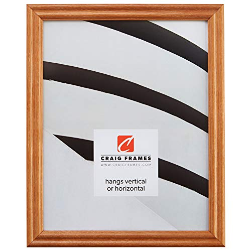 (Craig Frames 200ASH105 24 by 36-Inch Picture Frame, Wood Grain Finish, 0.75-Inch Wide, Natural Brown)