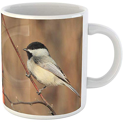 Chickadees Yard Design - 11oz Coffee Mugs Tea Cups Gifts Blue Backyard Chickadee Bird Sky Branch Black Capped Clouds North Ceramic Coffee Mugs Tea Cup Souvenir