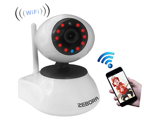Internet Video Security Monitoring (Zebora WiFi Wireless Network IP Security Surveillance Video Camera System with Pan, Tilt and Night)