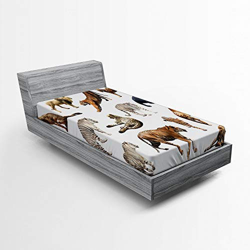(Lunarable Safari Fitted Sheet, Group of Tigersand Other Big Wild Cats Predatory Feline Zoo Lying Standing, Bed Cover with All-Round Elastic Deep Pocket for Comfort, Twin Size, Multicolor)