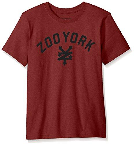 Zoo York Men's Big Boys' Short Sleeve Crew Neck Shirt, Immergruen Dark Red, Large (14/16)