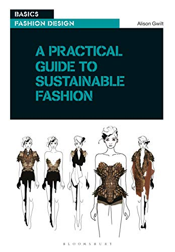 (A Practical Guide to Sustainable Fashion (Basics Fashion)