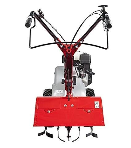 Eurosystems RTT2 motor Honda motocultor, fabricado en Italia ...