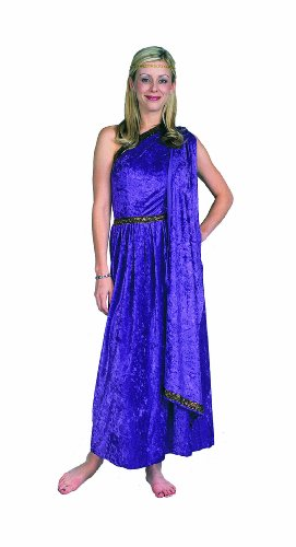 RG Costumes Women's Roman Toga Adult Purple Long, One Size