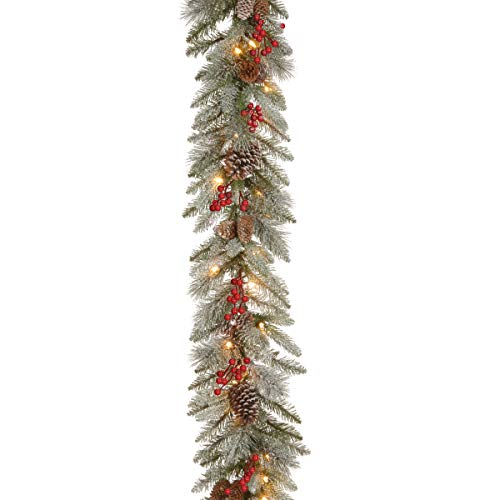 National Tree Frosted Mountain Spruce Garland Green -  ADULT