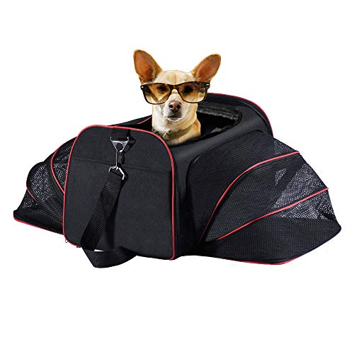 (Cyttengo Airline Approved Expandable Pet Carrier, Dog Travel Bag Easy Carry on Luggage, a Extra Spacious Soft Sided Carrier, Designed for Cats, Dogs up to 22 lb (Medium Expandable))