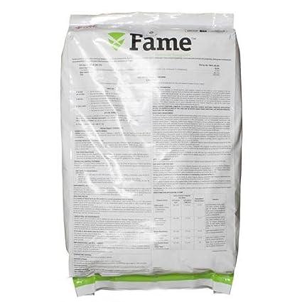 Amazon com : Fame Granular Fungicide (Disarm G Substitute