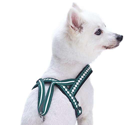 Image of Blueberry Pet 7 Colors Soft & Comfy Jacquard Padded Dog Harness, Chest Girth 21.5