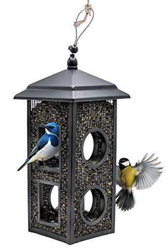 �� Birdhouse Lantern Style Hanging Wild Bird Feeder, Premium Black Iron Design with Hanger, Great for Attracting Different Types of Birds Outdoors, Backyard, Garden, (Lantern Style) ()