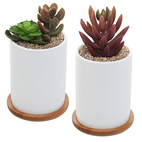 MyGift Ceramic Succulent Removable Saucers