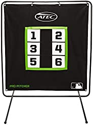Pro Pitcher - Screen Only