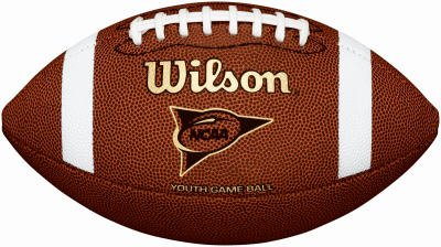 Wilson NCAA Composite Football