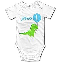 Dinosaur Balloon 1st Birthday Short Sleeve Infant Onesie Bodysuit