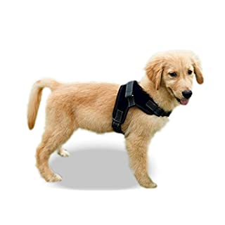 Copatchy No Pull Reflective Dog Harness (Small, Black)