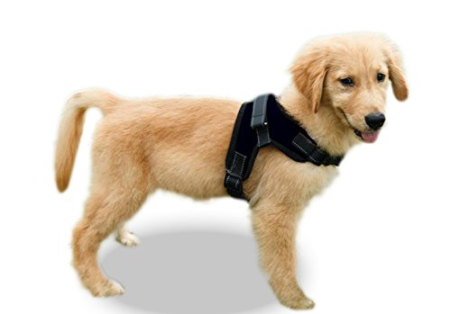 Copatchy No Pull Reflective Adjustable Dog Harness with Handle (Medium Black) by Copatchy