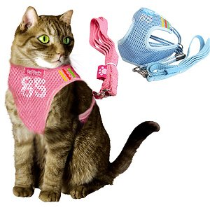 Sports Style Mesh Dog Vest Harness & Leash Set - X-Small (11''-13'') / Blue by HOW'S YOUR DOG - Harnesses & Packs
