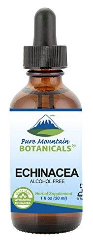 Liquid Echinacea Drops - Kosher Echinacea Tincture Alcohol Free Extract - 500mg Organic Echinacea -1oz Bottle Echinacea Angustifolia Root Extract