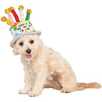 Birthday Cake Hat For Pet Small Medium