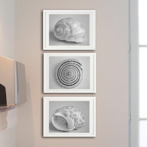 Black and White Bathroom Decor, Seashell Photography Print Set of 3 Sea Urchin Shell Pictures, Nautical Bathroom Wall Art Set- 20% Discount