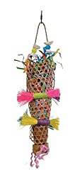 Prevue Pet Products 62513 Tropical Teasers Confetti Kazoo Bird Toy